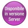 Version Server